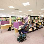 Langdale library individual study